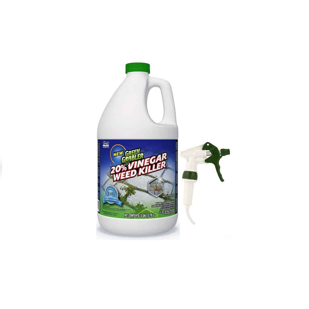 Featured Green Gobbler Vinegar Weed and Grass Killer