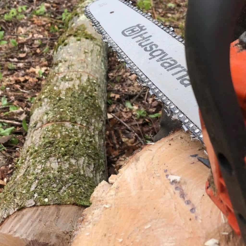 the-Professional-Chainsaw