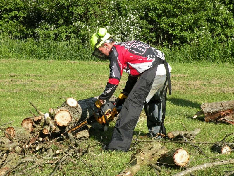 Man cuts a tree with a chainsaw