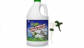 Best Weed Killer for Lawns That Is Guaranteed to Work Effectively