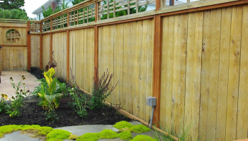 Best Fence Stains and Sealers to Buy in 2020