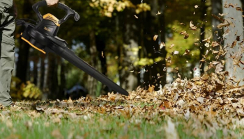 Best Leaf Vacuum Mulcher to Buy in 2020: Complete Reviews